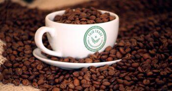 Fair Trade im Einzelhandel