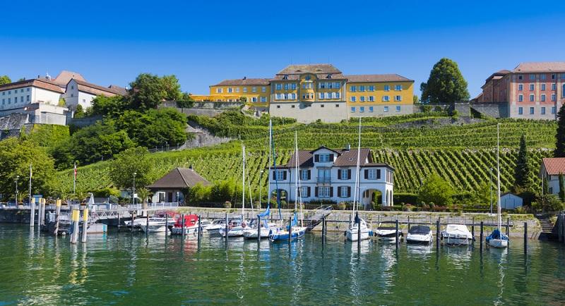 Baden-Württemberg ist bekannt für seine guten Weine und so bietet sich eine Tour durch die Weinberge oder eine Weinsafari geradezu an. (#01)