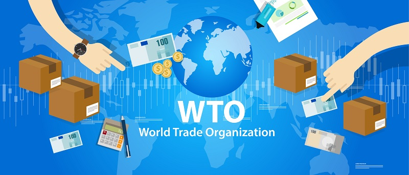 Generell ist die Zahl protektionistischer Maßnahmen als Instrument der Handelshemmnisse seit dem Jahr 2008 kontinuierlich angestiegen: Im Zeitraum von Oktober 2008 bis Oktober 2017 leiteten die Mitglieder der Welthandelsorganisation (WTO) insgesamt 1.536 handelsbeschränkende Maßnahmen ein, von denen insgesamt 675 von den G20-Ländern ausgingen.