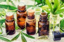 Cannabisöl kaufen: Das ist zu beachten!