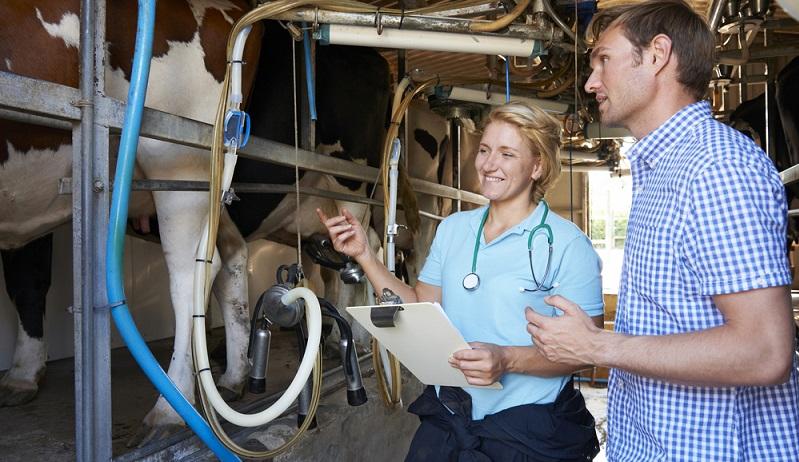 Wer seine Ställe mit modernen Melkrobotern ausrüstet, die zuverlässig die Milchmengenerfassung von der Skalierung einzelne Kuh bis hin zur kompletten Herde ermöglichen, kann sehr genau erkennen, wenn es zu Abweichungen kommt.